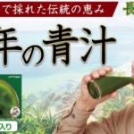 """健康で長生きの秘訣は長寿の島の伝統野菜""""長命草""""入り #健康 #長寿 #長生き"""